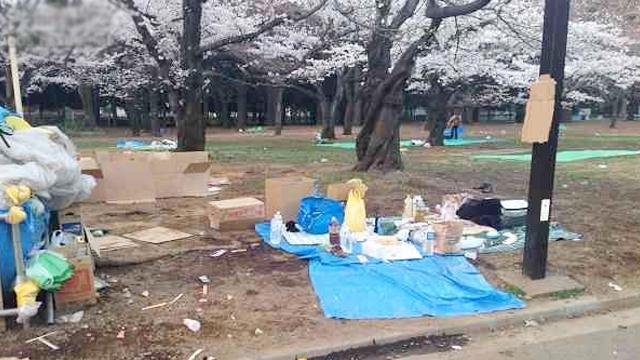 日本媒体不明真相就栽赃我们破坏环境!日本网友:对不起,是我们干的