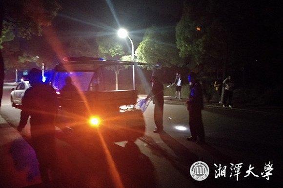 2女生接连被流浪狗咬伤 湘潭大学:当初捕杀遭到反对