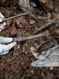 卢旺达墓穴藏207具尸骨 大屠杀痕迹仍在