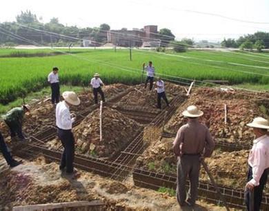非法占用农用地