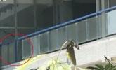 女生被学校玻璃砸中身亡 家属:疑有人靠玻璃致坠落