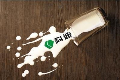 """商丘科迪乳业""""后院起火"""",网红""""小白奶""""市场降温"""