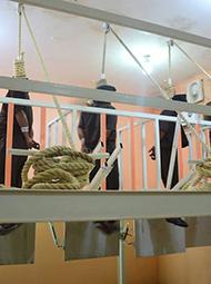 4名恐怖分子被处决