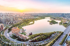 西安投资结构和方向优化 文化产业投资增长99.1%