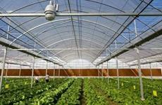 陕西国家现代农业产业园已达3个 居全国第一方阵