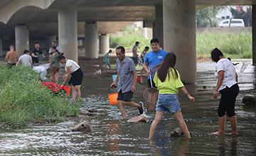 青岛河流水位暴涨 市民下水抓鱼
