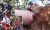 男子遛狗遭熊袭击咬住腿 救援者被迫砍掉熊头营救
