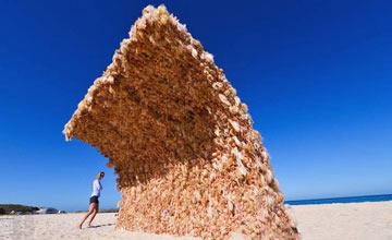 海边的遮阳墙吸引众人 大部分人看到后毛骨悚然