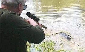爱马被吃 73岁老人一枪打死鳄鱼报仇