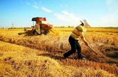 西安市将于9月18日举行中国农民丰收节庆祝活动