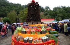 """我省首届""""中国农民丰收节""""庆祝活动各具特色"""