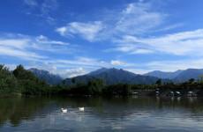 渭南:违建土地覆土复绿初见成效 恢复耕地约676亩