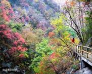 快拿起你的相机与大美尧山来一场浪漫的邂逅
