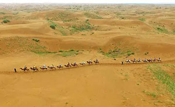 突发!中国竟然干掉千年沙漠!联合国都坐不住了···
