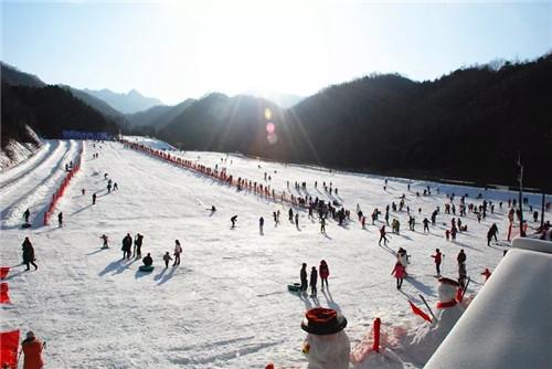 门票买一送一 嵩县木札岭速龙滑雪场即将营业