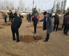 商丘睢陽區閆集鎮:栽下一片新綠 共建美麗家園