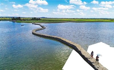 海南周刊丨春来蛇桥浮水面