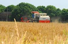 陕西今年将完成2700万亩粮食生产功能区划定任务