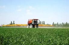 今年西安小麦播种面积达227.84万亩 建设300个示范村