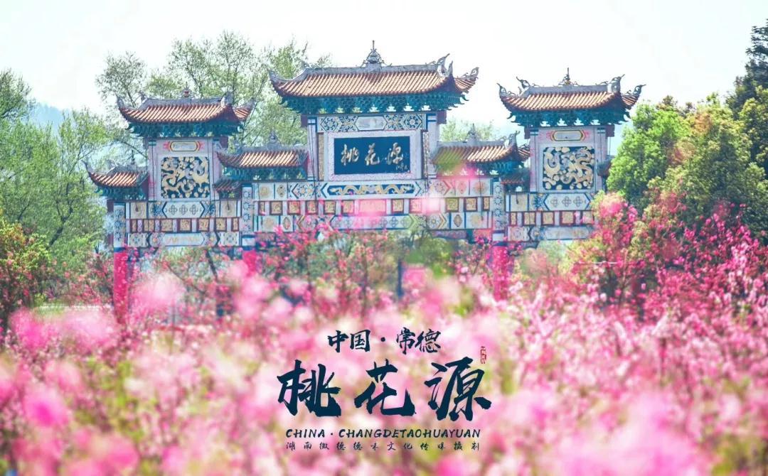 """颖儿刘烨登《天天向上》""""安利""""常德宝藏桃花源"""