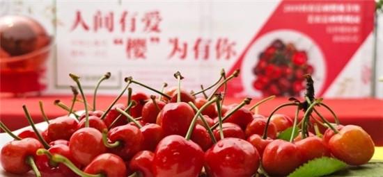 2019河南富硒樱桃节暨美农富硒樱桃园玩转樱桃季正式启动