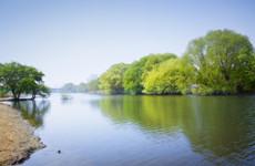 西安迎来第三个湿地日 今年将修复河道湿地4000亩