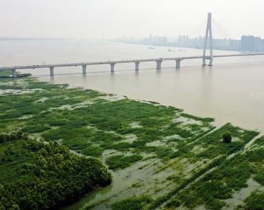 长江水位上涨 江水漫滩