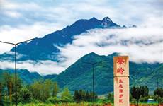 西安市近日出台秦岭生态环境保护三年行动计划