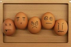 鸡蛋保卫战:越野车的蹂躏下如何生存?