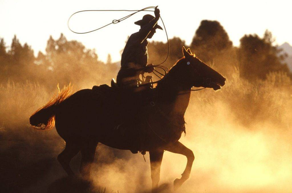 举杯敬自由 以牛仔的方式迎接新年
