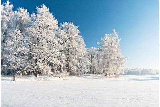 福特撼路者雪天出行