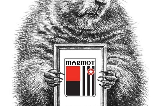 土拨鼠MARMOT:互联网