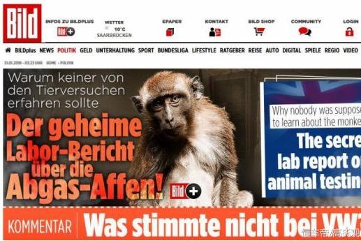 用猴子被做活体实验!德国巨头再次陷入丑闻
