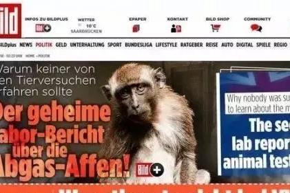 德国车用猴子测尾气?其实咱们才是猴子