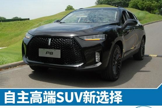 WEY P8 新车图解