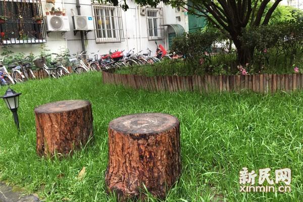 """楊浦區水電新村15號樓門前""""垃圾場""""變成小花園"""