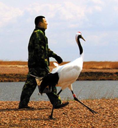 保护珍稀动物,维护我们共同的生命圈