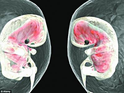 胎儿首次心跳