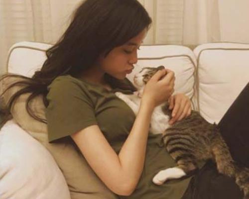 欧阳娜娜微博晒猫 网友:放开那只猫让我来