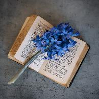 电子阅读时代如何留住书香