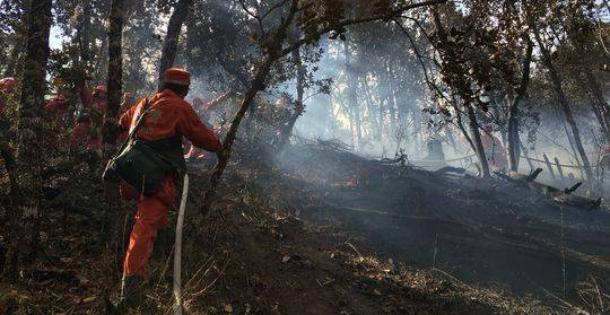 雅江森林火灾仍在扑救 阿坝州森警增援