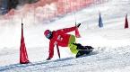 河北省扎实推进2022年冬奥会和冬残奥会筹办工作