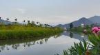 河北省12105个村庄被列为农村生活污水治理重点