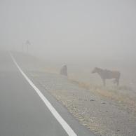 今年沙尘天气过于频繁?专家辟谣