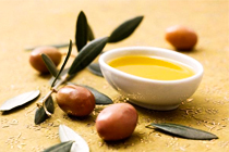 三大油橄榄适生区之一