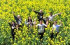 十里菜花、黄金铺地,每年三月,30万亩油菜花盛开一片,引来八方游客。