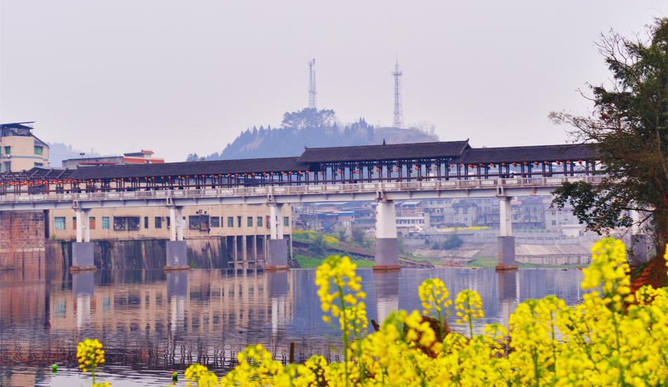花与桥,相映成趣。