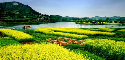 依托资源禀赋 以花为媒推动农旅融合发展
