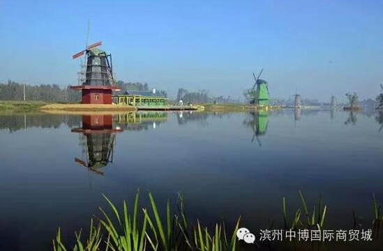 滨州南海风景图片