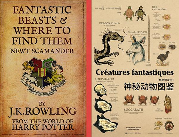 《神奇动物在哪里》出现的有趣物种